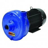 AMT 420A-95 1750 RPM Centrifugal Pump | 180 GPM