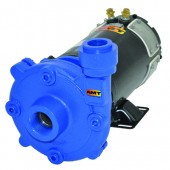 AMT 489G-95 High Head Washdown Pump | 55 GPM