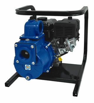 "IPT Model 2G5XQCR 2"" Solids Pump 