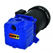"AMT 285F-95 1"" Cast Iron Self-Priming Centrifugal Pump 