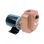 "AMT 4850-97 3/4"" Electric Bronze Utility Pump 